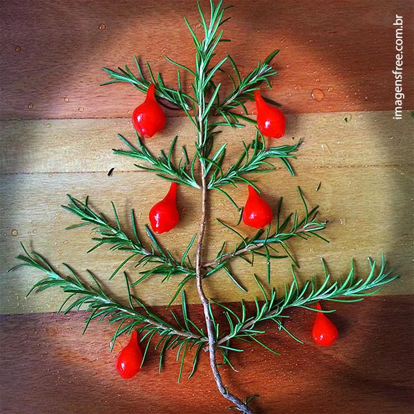Imagem free de árvore de Natal e Pimenta de biquinho.