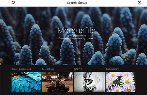 bankco de imagens grátis Morguefile