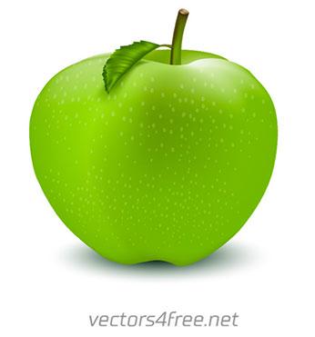 banco-de-imagens-vetoriais-vector4free