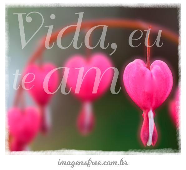 Te Amo Muito Amor Frases Dia Dos Namorados Para Compartilhar