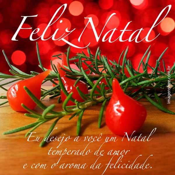 Mensagem de Feliz Natal com imagem de alecrim e pimenta