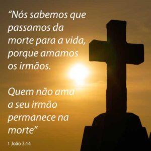Da morte para a vida 1 João 3:14 Versículo para compartilhar