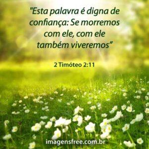 Da morte para a vida versículo - 2 Timóteo 2:1